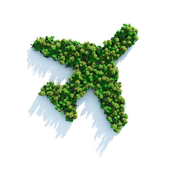 绿色飞行图